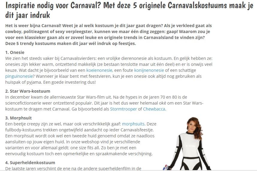 tekschrijver blog schrijven carnavalsblog